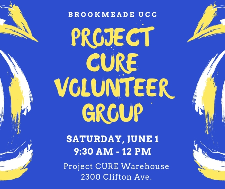 project cure 6.19